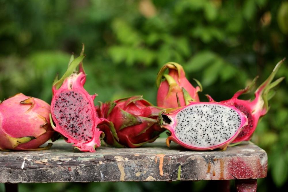 Dragonfruit stall