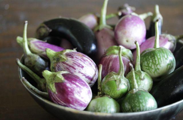 eggplant bowl