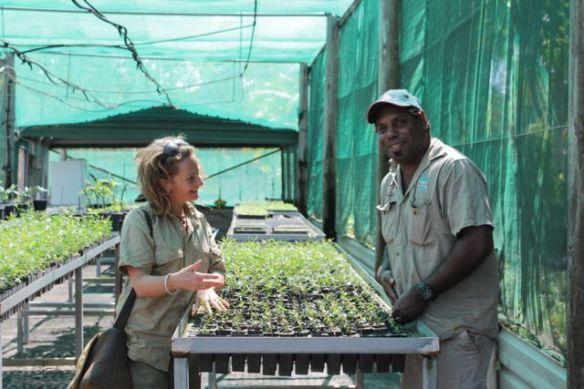 tiwi nursery