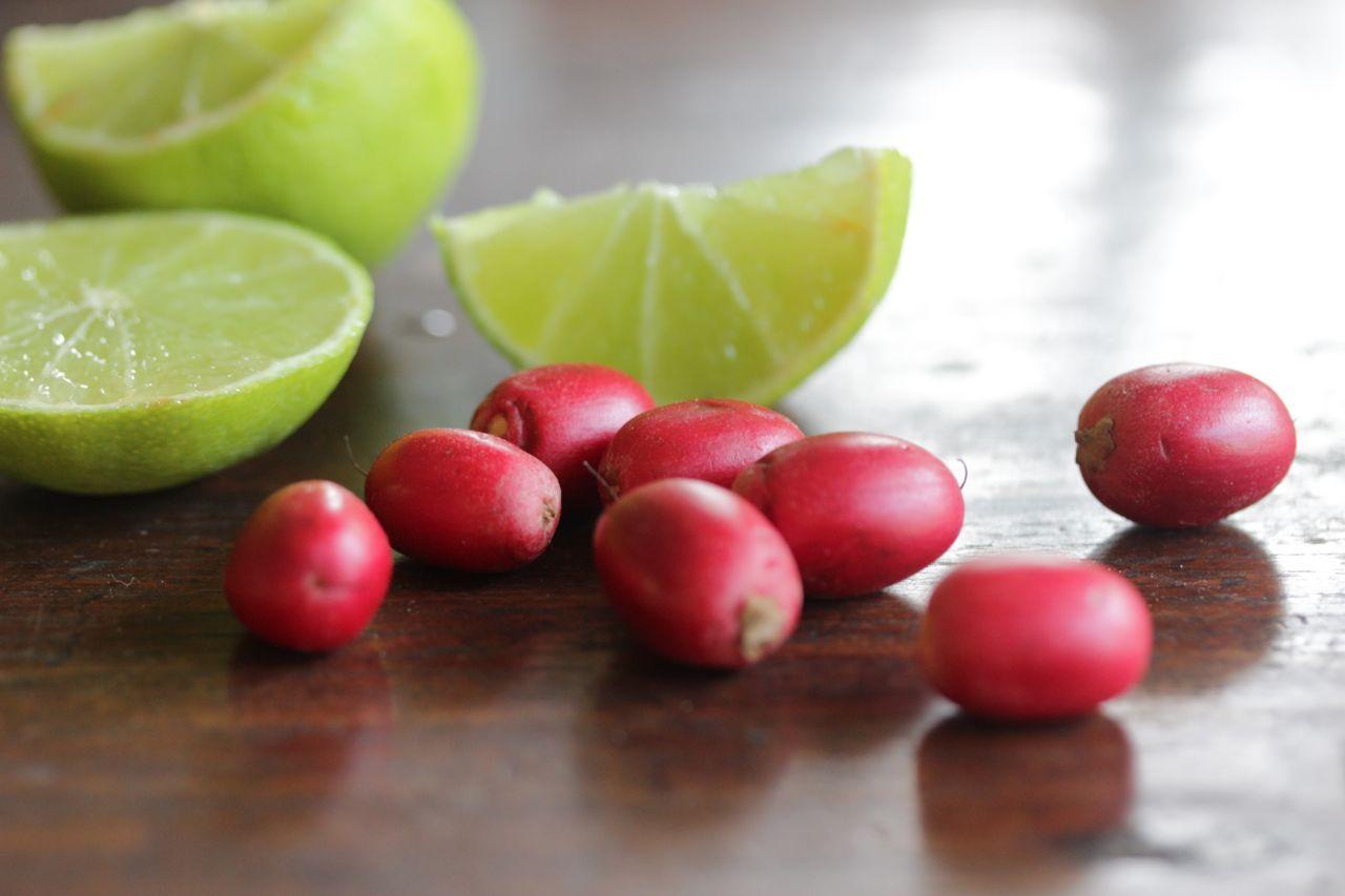 Grow Fruit Darwin Tasteofthetopend