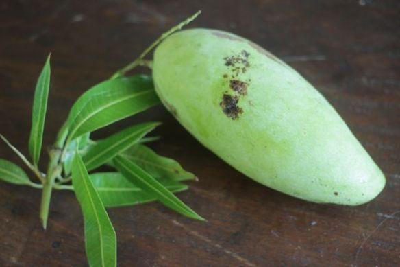 sour mango