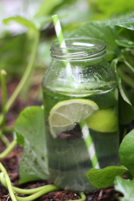 rainwater jar