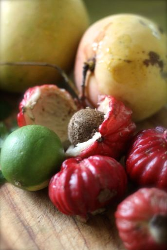 bush apple ingredients