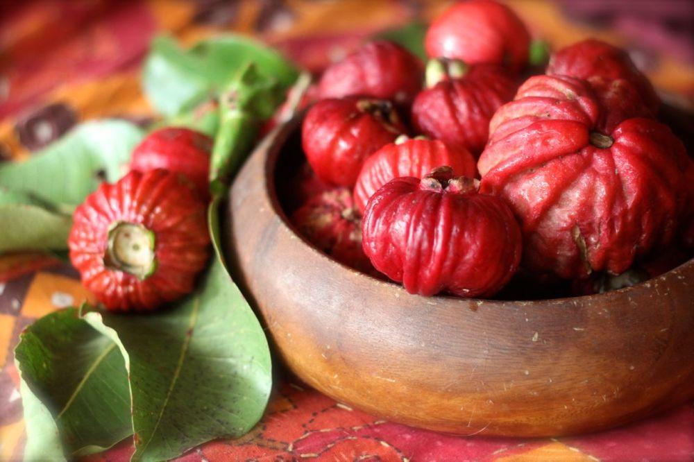 red bush apples in bowl 3