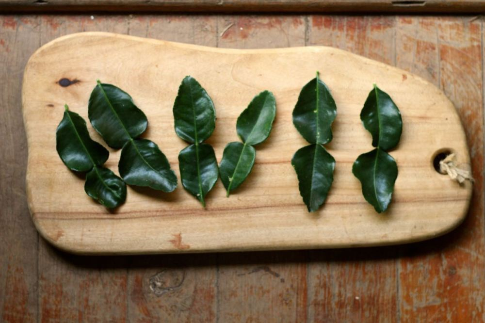 Kaffir lime leaves2